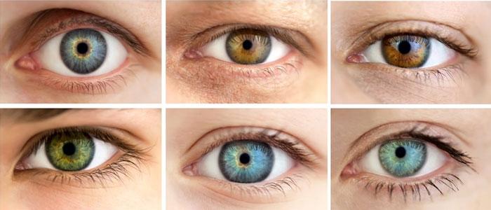 ژنتیک رنگ چشم - رنگ چشم بچه از پدر به ارث می رسد یا مادر